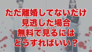 ただリコ無料動画はdailymotionやPandoraにある?視聴するデメリットを紹介!